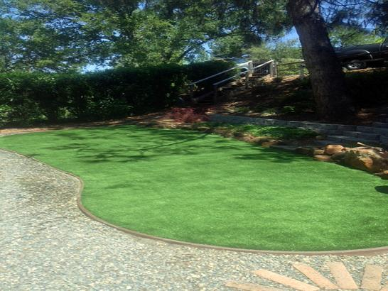 Artificial Grass Photos: Synthetic Turf South Pasadena, Florida Backyard Playground, Backyard Landscape Ideas
