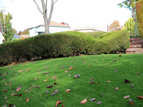 Artificial Grass Photos: Synthetic Turf Supplier Bayshore Gardens, Florida Landscape Photos, Front Yard