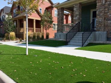 Artificial Grass Photos: Synthetic Turf Supplier Bloomingdale, Florida Home And Garden, Front Yard Design