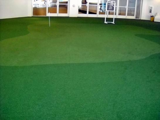 Artificial Grass Photos: Synthetic Turf Supplier Dover, Florida Diy Putting Green, Commercial Landscape