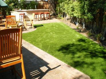 Artificial Grass Photos: Synthetic Turf Supplier Masaryktown, Florida Dog Parks, Backyard