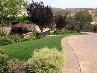 Artificial Grass Photos: Synthetic Turf Supplier Nobleton, Florida Lawn And Landscape, Front Yard Landscaping