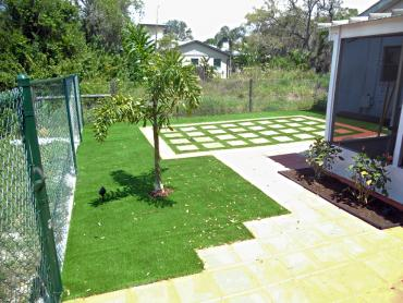 Artificial Grass Photos: Synthetic Turf Supplier Saint Pete Beach, Florida Lawn And Garden, Backyard Landscaping Ideas