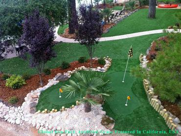 Synthetic Turf Tampa, Florida Rooftop, Small Backyard Ideas artificial grass