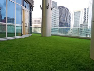 Turf Grass Campbell, Florida Landscape Design, Commercial Landscape artificial grass