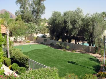 Artificial Grass Photos: Turf Grass Frostproof, Florida Backyard Playground, Backyard Ideas
