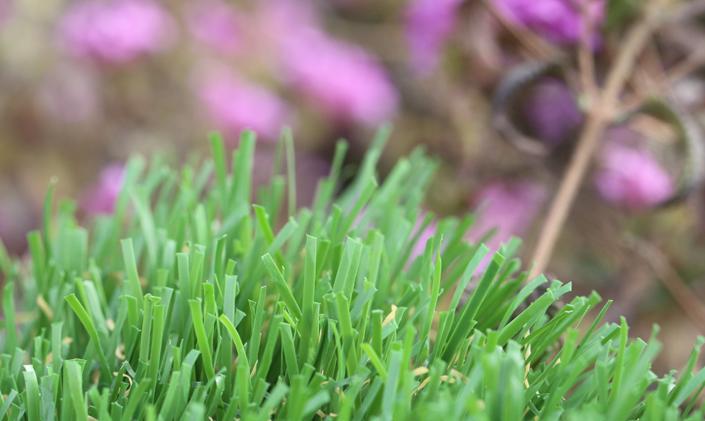 Artificial Grass Emerald-92 Stemgrass Artificial Grass Tampa Florida