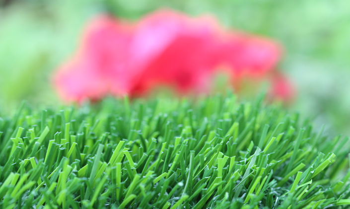 Artificial Grass Evergreen-80 Artificial Grass Tampa Florida